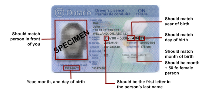 How-To-Read-An-Ontario-Class-G-Licence